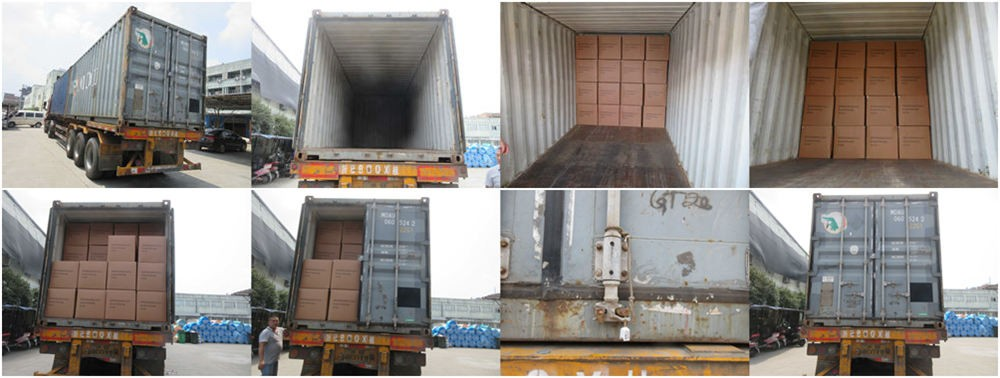 6 Key Steps should be checked During Container Loading Inspection