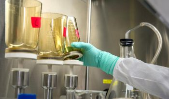 Chemical Testing Analysis
