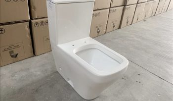 Toilet Inspction and Quality Control in China (3)